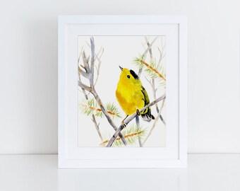 Bird Art, Goldfinch, Yellow bird, Bird watercolor