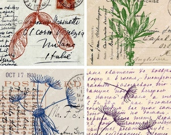 Scientific Specimens of Seedpods on Postcards in 2.5 inch squares -- piddix digital collage sheet 529