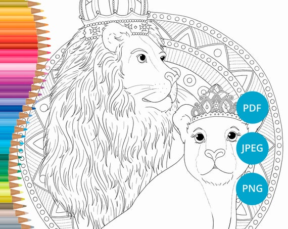 Lion Coloring Pages Lioness Adult Book Printable