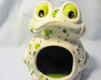 Unique Kitchen Sponge Holder Frog, Vintage Frog Soap Holder, Childrens Hand Stantion Frog, Vtg Frog, Kitchen Scrubby Holder Frog Open Belly
