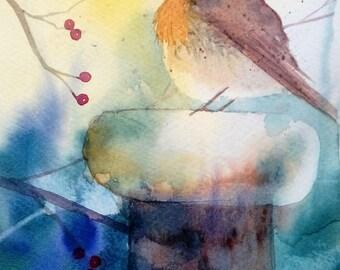 Winter Robin original watercolour painting by Shari Hills