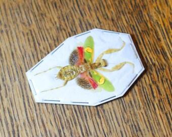 Real Praying flower mantis bug. Taxidermy - natural curiosty - oddity - entomology