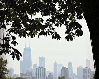 Chicago Skyline from Lincoln Park Zoo|  Chicago Wall Art - Color Print| Urban|  Oversized Prints |Large Home Decor| Photography