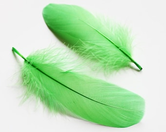 """Dyed Green Goose Coquille Feathers 3-5"""" 