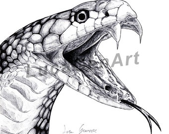 Cobra Snake handmade Drawing, Instant Download, Digital Print, Made in pencil, charcoal and ink, Realistic Drawing