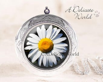 Daisy Locket Necklace - Silver Daisy Jewelry, White Daisy Photo Locket, Wildflower Locket, Silver Flower Locket, Nature Lover Jewelry Gift