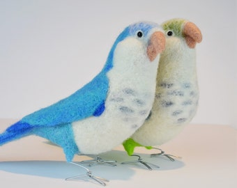 Mr. Blue or Green Faced Quaker Parrot, needle felted bird sculpture