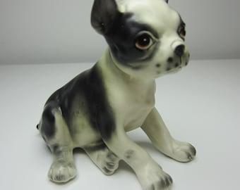 Boston Terrier - Vintage 1950s - Pity Puppy - So Pretty!