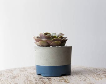 Mother's Day Gift for Her, Large Concrete Planter, Slate