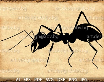 Vector ANT, SVG, AI, eps, pdf, svg, dxf, png, jpg Download, Digital image, graphical, discount coupons