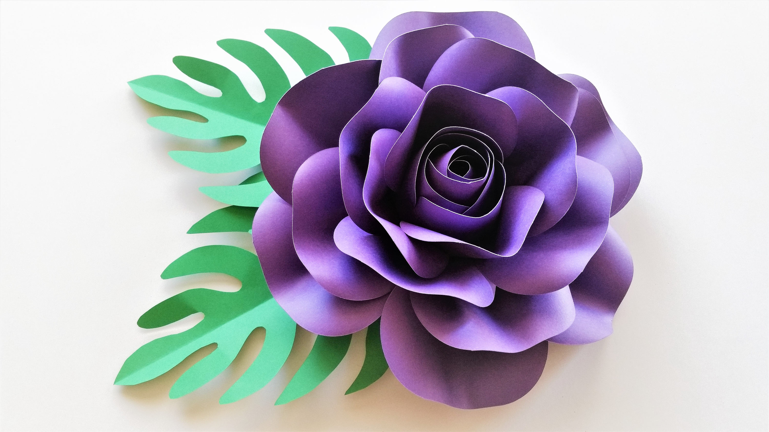 Paper flower kit do it yourself paper flower kits paper zoom mightylinksfo Images