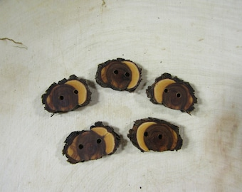 5 small wooden buttons- Juniper (2042)