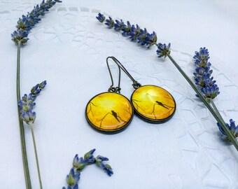 Yellow round earrings, Unique earrings, Bird earrings, Resin jewelry, Casual earrings, Bronze earrings, Unique jewelry, Two sided earrings