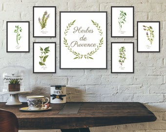 Delightful Unframed Watercolor Herb Wall Art, Kitchen Wall Art Set, Gallery Wall Art  Set,