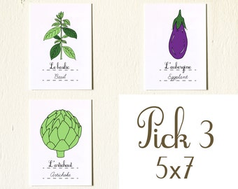 French Vegetables Fruits Herbs Kitchen Art Eco Friendly - Custom set of three 5x7 vegetables fruits art prints Gardening Plants Mother's day
