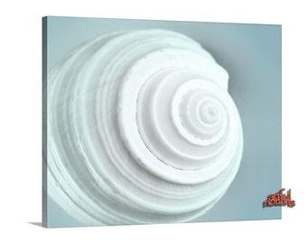 Blue Bath Art, Seashell Picture, Art for Bathroom, Sea Shell Art, Home Decor, Wall Art, Teal Art, Aqua Art, Shell Print, Gift for Bathroom