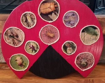 wooden lady bug wall hanging