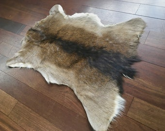 Amazing vintage Nordic fallow deer hide skin pelt. - FREE shipping in Canada and USA. Scandi hygge bogo lodge mancave cottage western cabin