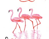A Flamboyance of Flamingos Linocut, Terms of Venery, Collective Nouns for Birds Lino Block Print Collection, A Flamboyance of Pink Flamingos