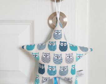 Star door name or door designs blue owls and turquoise star cushion