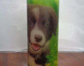 collie puppy candle
