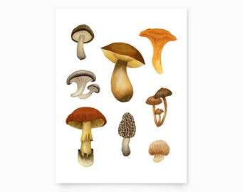 Wild Mushrooms Art Print