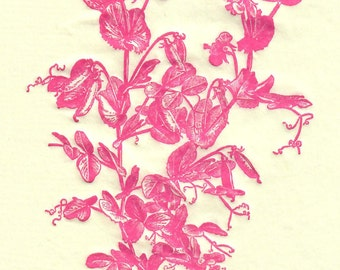 Pink Sweet Pea Guest Towels/Napkins, Set of 16