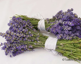 Digital Download Purple Lavender Flower Photo Print, Botanical, Flower Photography
