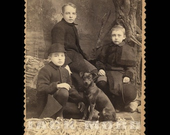 Excellent 1880s 1890s Cabinet Photo Muncie Indiana Brothers / Boys & Little Dog