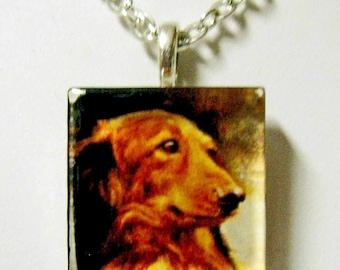 Dachshund pendant and chain - DGP01-022