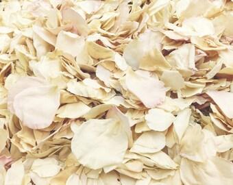 Shabby Chic Petals. 10 cups. Rose Petals. Petals. Flower Petals. Wedding Petals. Freeze-dried Petals.  Flower Confetti.  Wedding Petals. USA