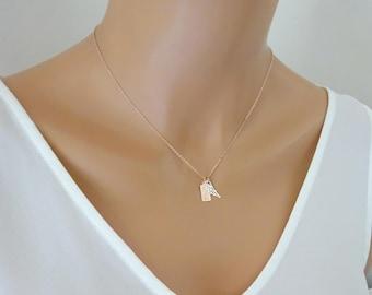 Pet loss necklace, Paw print necklace, pet memorial necklace, Dog necklace, personalized pet necklace, remembrance necklace, cat necklace