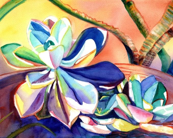 Original Watercolors, Succulent Paintings, Cactus Paintings, Kauai Fine Art, Tropical Wall Decor, Hawaii, Succulent art, tropical plants
