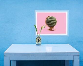 Globe Cactus