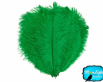 "Ostrich Ostrich, 1/2 lb - 9-13"" KELLY GREEN Ostrich Drab Wholesale Feathers (Bulk) : 2090-D"