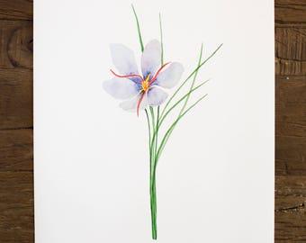 Saffron Print