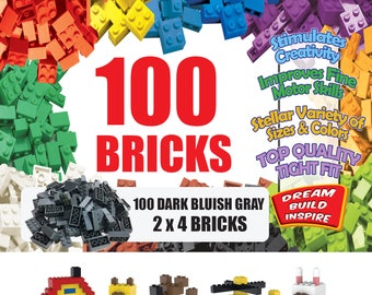 100 Dark Bluish Gray LEGO Compatible Bricks