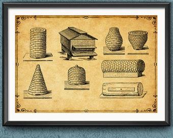 Beekeeper Gift Wall Art - Beekeeper Wall Decor - Beekeeping Poster - Honeycomb - Bee hive - Honey Bee Poster - 1384