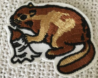 Adorable BEAVER Patch Detailed Mint Condition WILDLIFE