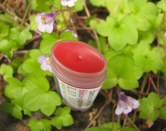 Hibiscus, Ginger & Rosehip Lip Balm - made from Botanicals and Naturally Colored with Herbs