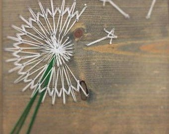 Make a Wish! Is it a weed or a flower? It's just a dandelion
