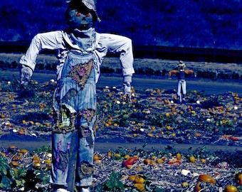 Scarecrow Crossing Perfume Oil: Acorns, hay, leaves, soil, licorice, and dark, strange places. Halloween perfume, Gothic Perfume