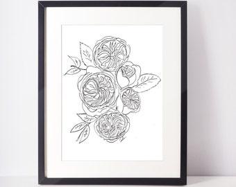 Garden Rose Ink Print