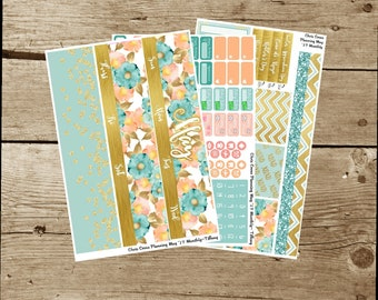 May 2017 Monthly Kit-- Tiffany (for use in Erin Condren Life Planner)