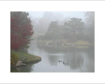 Foggy Japanese Garden