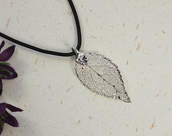 SALE Leaf Necklace, Silver Evergreen Leaf, Real Leaf Necklace, Silver Evergreen Leaf Pendant, SALE27