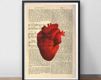 Anatomical Human Heart Body Skeleton Rib Cage Dictionary Art Minimal Minimalist Alternative Poster Print Graphic Design Wall Decor Art Deco
