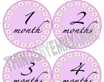 Instant Download Baby Milestone Stickers, Baby Month Stickers, 12 Growth +BONUS Bodysuit Stickers, Monthly Stickers, Pink Daisy Flowers