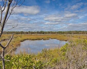 Coastal Art Print, Beach Art, Nature Wall Photo, Tidal Marsh Print, Beach Photography, Large Wall Art, Green Blue Color Palette, Beach Grass