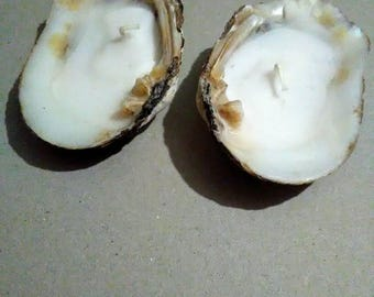 Pair of Oyster Shell Candles
